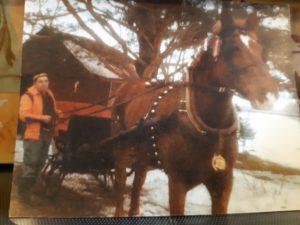 Mon oncle Lucien et Brillant